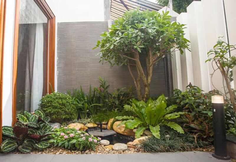 Mẫu tiểu cảnh sân vườn ấn tượng với nhiều cây xanh