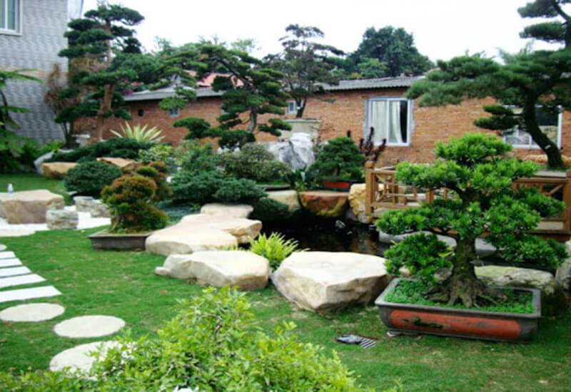 Mẫu tiểu cảnh sân vườn được bày trí công phu