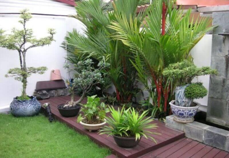 Mẫu tiểu cảnh sân vườn kết hợp với nhiều loại cây xanh khác nhau