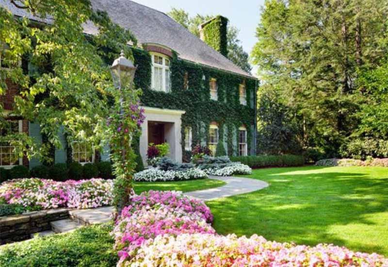 Thiết kê cảnh quan sân vườn đẹp